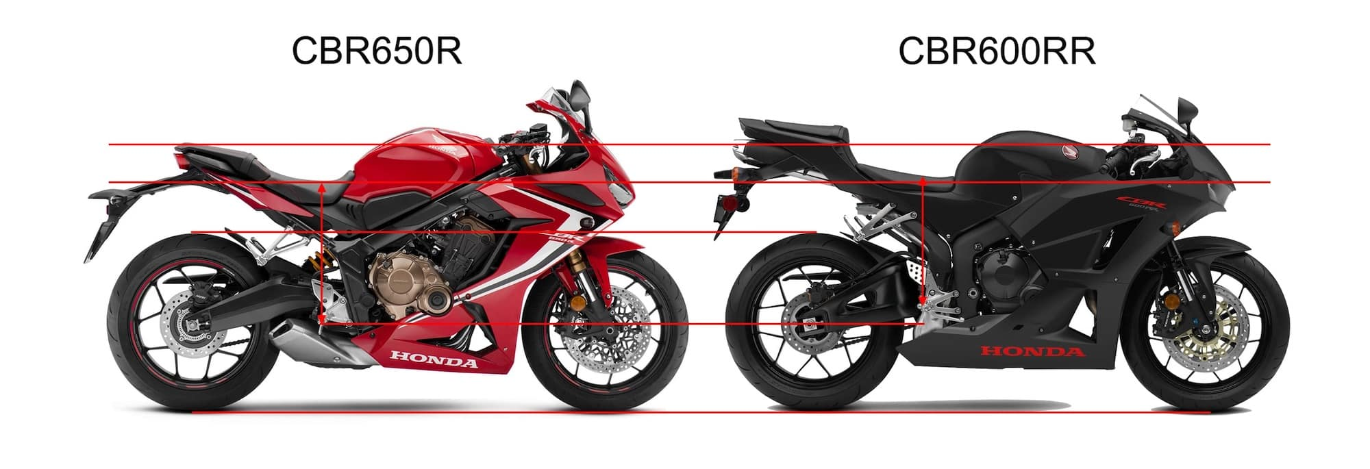 Comparing riding position of Honda CBR650R and Honda CBR600RR