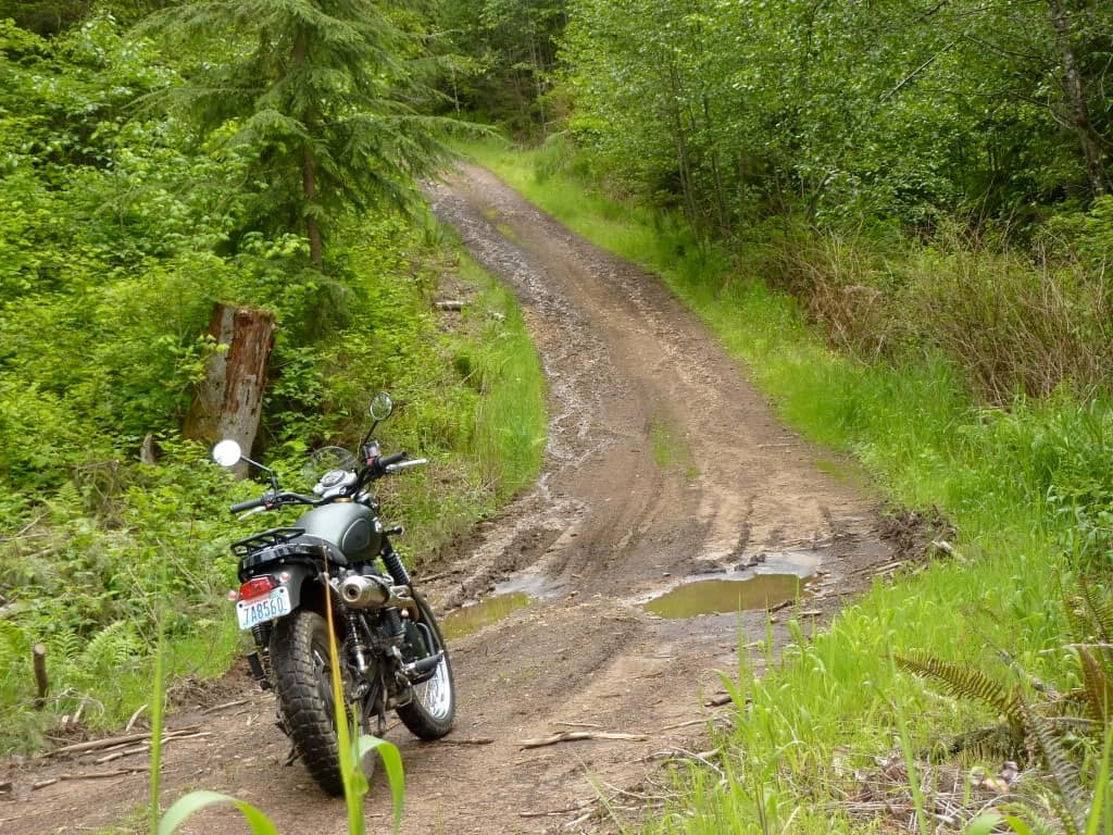 Triumph Scramblers can handle dirt roads and mild off-roading